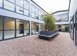 Modern internal garden in one of Nesta Business Centres